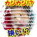 hamster-13755_960_720